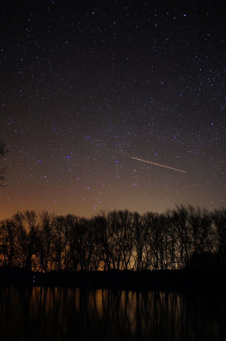 Stars above treeline