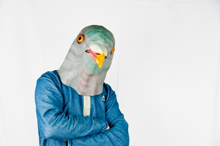 Guy in pidgeon mask