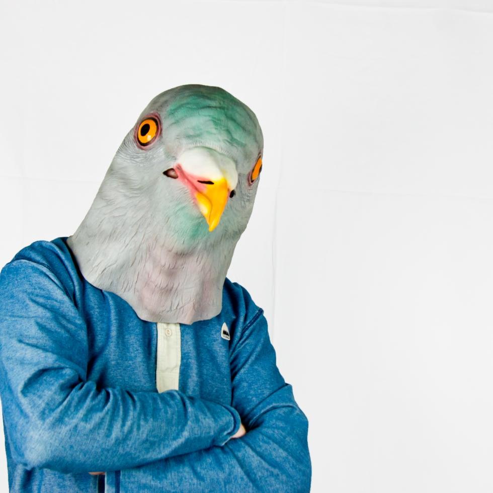 Guy in pidgeon mask