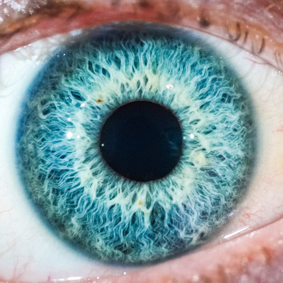 Macro of a human blue eye